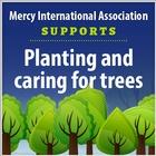 Planting_nurturing trees